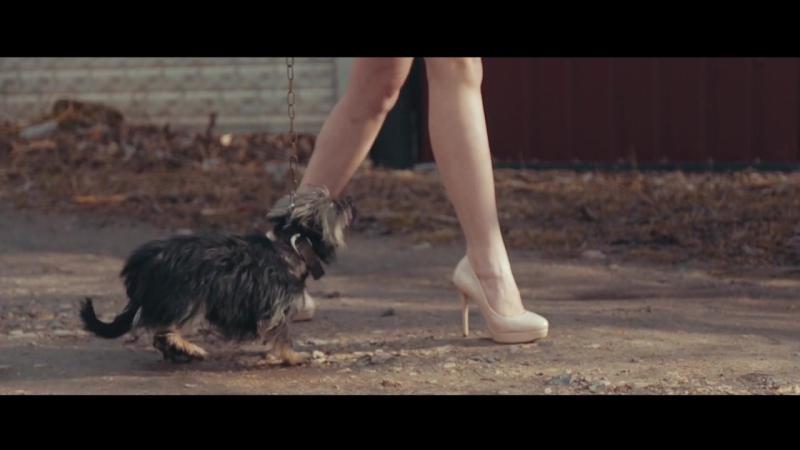 Візитка Міс ВТЕІ КНТЕУ 2017 - Кланцата Марічка