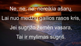 Rytis Cicinas - Ne, nereikia ašarų (Lyrics) Veida