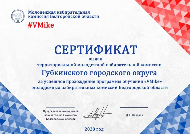 Итоги программы обучения молодежных избирательных комиссий Белгородской области «VMike», изображение №10