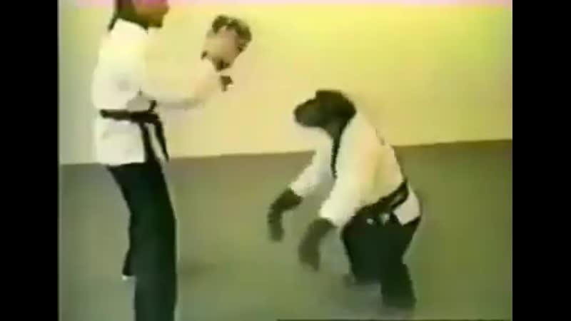 Monke karate