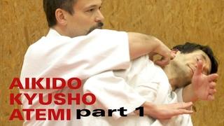 IRIMI NAGE VITALPUNKTE  - Aikido, Atemi, Kyusho (Dimmak) Elemente Teil 1 mit Konstantin Rekk