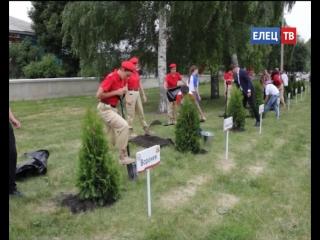 45 деревьев как символ памяти: в сквере Ани Гайтеровой заложена  Аллея городов воинской славы