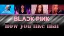 BLACKPINK How You Like That블랙핑크 How You Like That.🎤Karaoke Instrumental🎵.