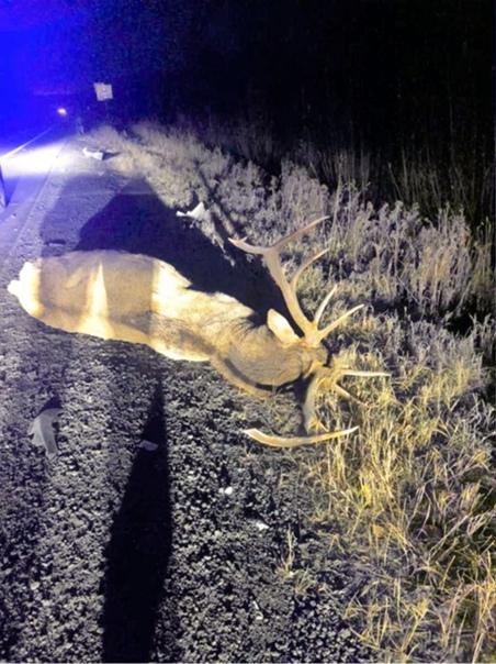 В Ханты-Мансийском районе водитель иномарки сбил о...