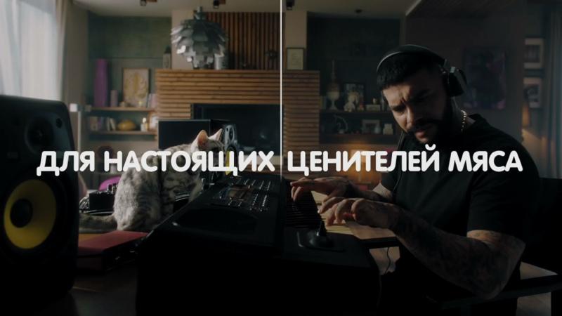 LIVE Даша Козловская — Как жить в одной квартире с котом? СТРИМ ИЗ ДОМА! IDRF FEST Live Commerce