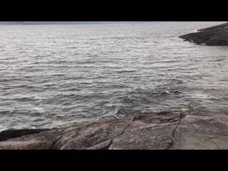 Kirill Nikitintan video
