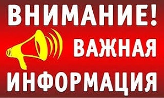 В селе Грачёвка Петровского района установлен карантин по заболеванию бешенством животных