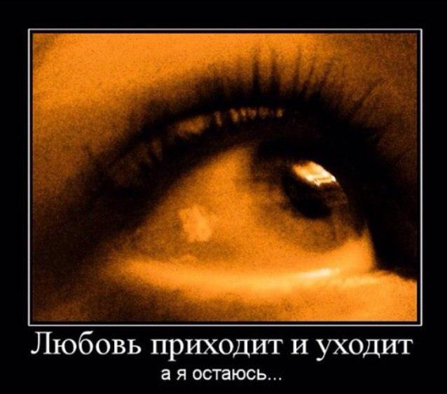 фото из альбома Ольги Беркут №11
