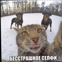 Кузнецов Лёва