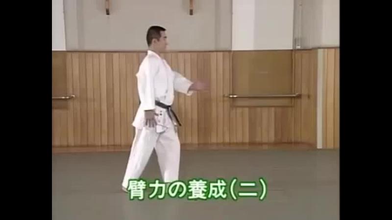Кихон доса Хирики но Ёсэй 2 Kihon dosa Hiriki no Yosei 2