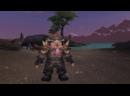 Mmoboom Еще 30 Вещей, Которые НИКОГДА Не Скажут Игроки в World of Warcraft!