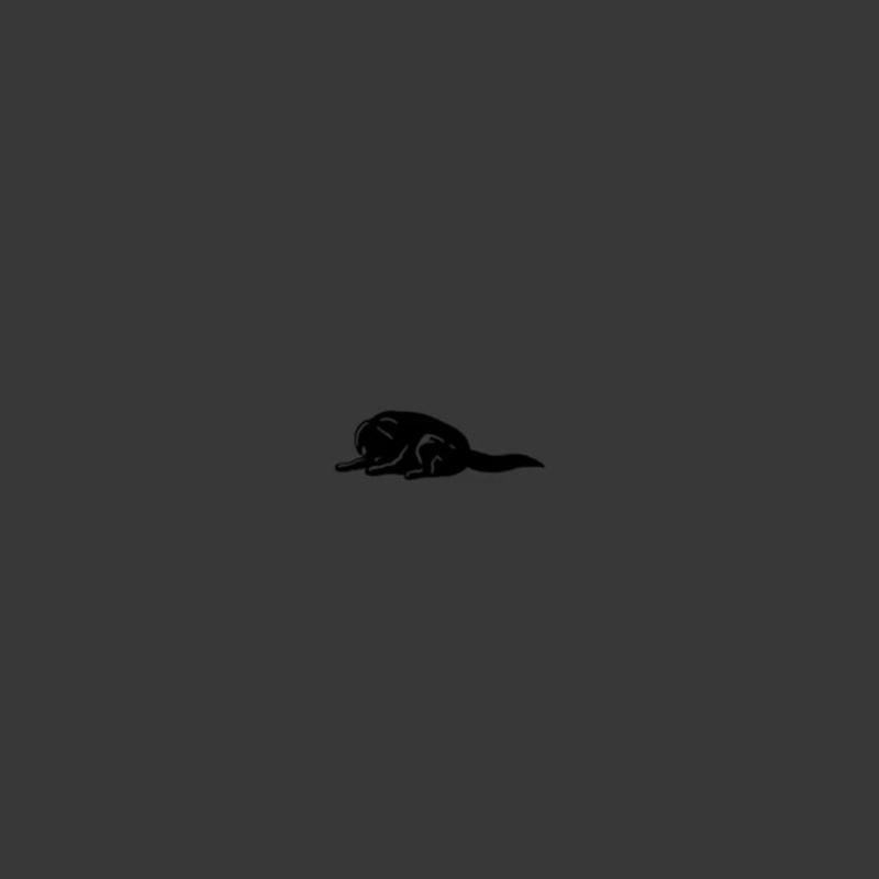 Канги — Собака (Отрывок трека) (FLOP FLOP)