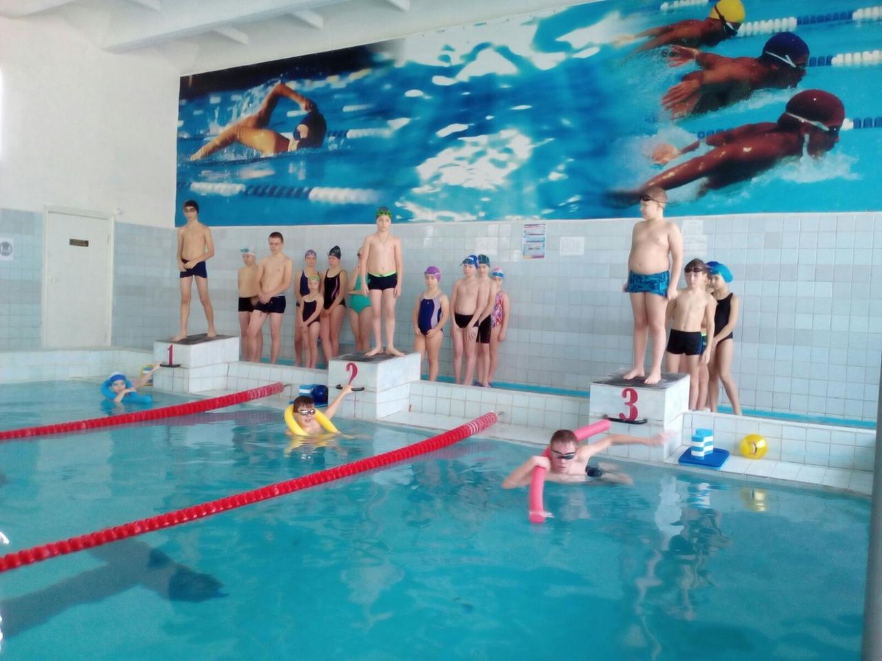 Петровские пловцы стали участниками спортивных соревнований