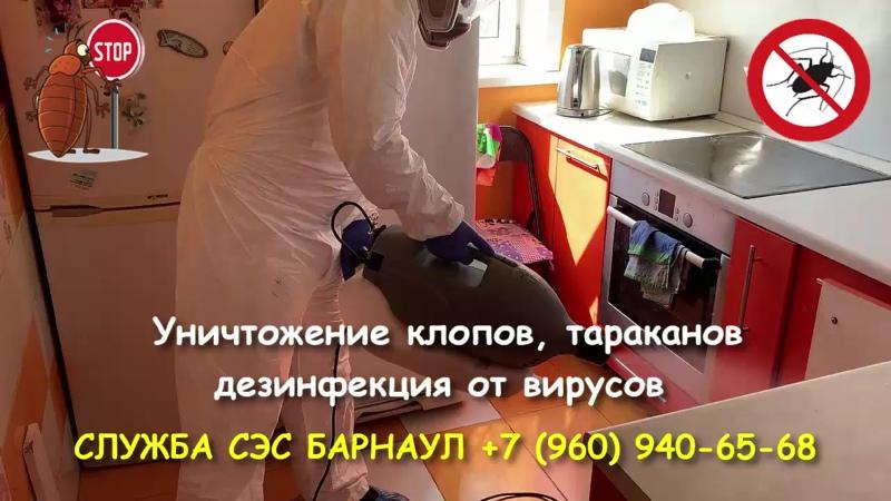 Служба СЭС Барнаул. Уничтожение клопов, тараканов