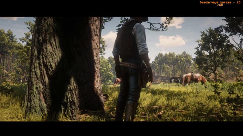 Red Dead Redemption 2 | Глава 3 — Клеменс-Пойнт #7 | Общение