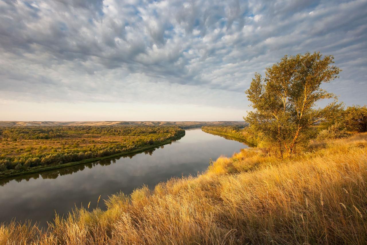 Компании Ростовской области победили в конкурсе Ростуризма