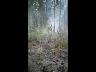 Мстинский Мост kullanıcısından video