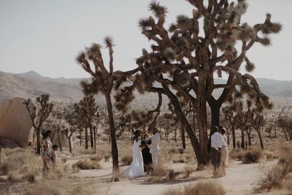 sCjBFf1GCvk - Найти свадебного ведущего оказалось проще простого