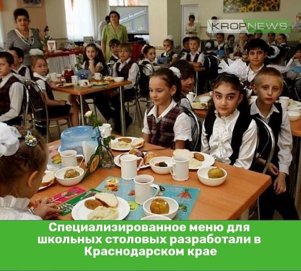 Специализированное меню для школьных столовых разр...