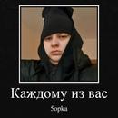 Баранов Кирилл | Ростов-на-Дону | 7