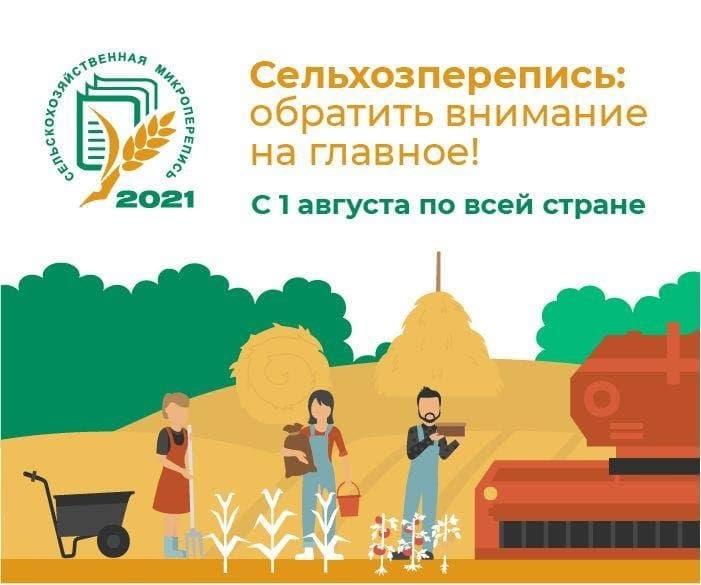 В Саратовской области 60% личных подсобных хозяйств уже поучаствовали в сельскохозяйственной микропереписи