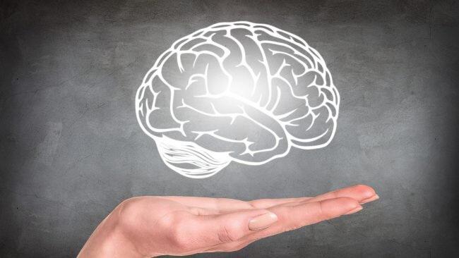 Уязвимый мозг: СМИ меняют наш мозг независимо от содержания