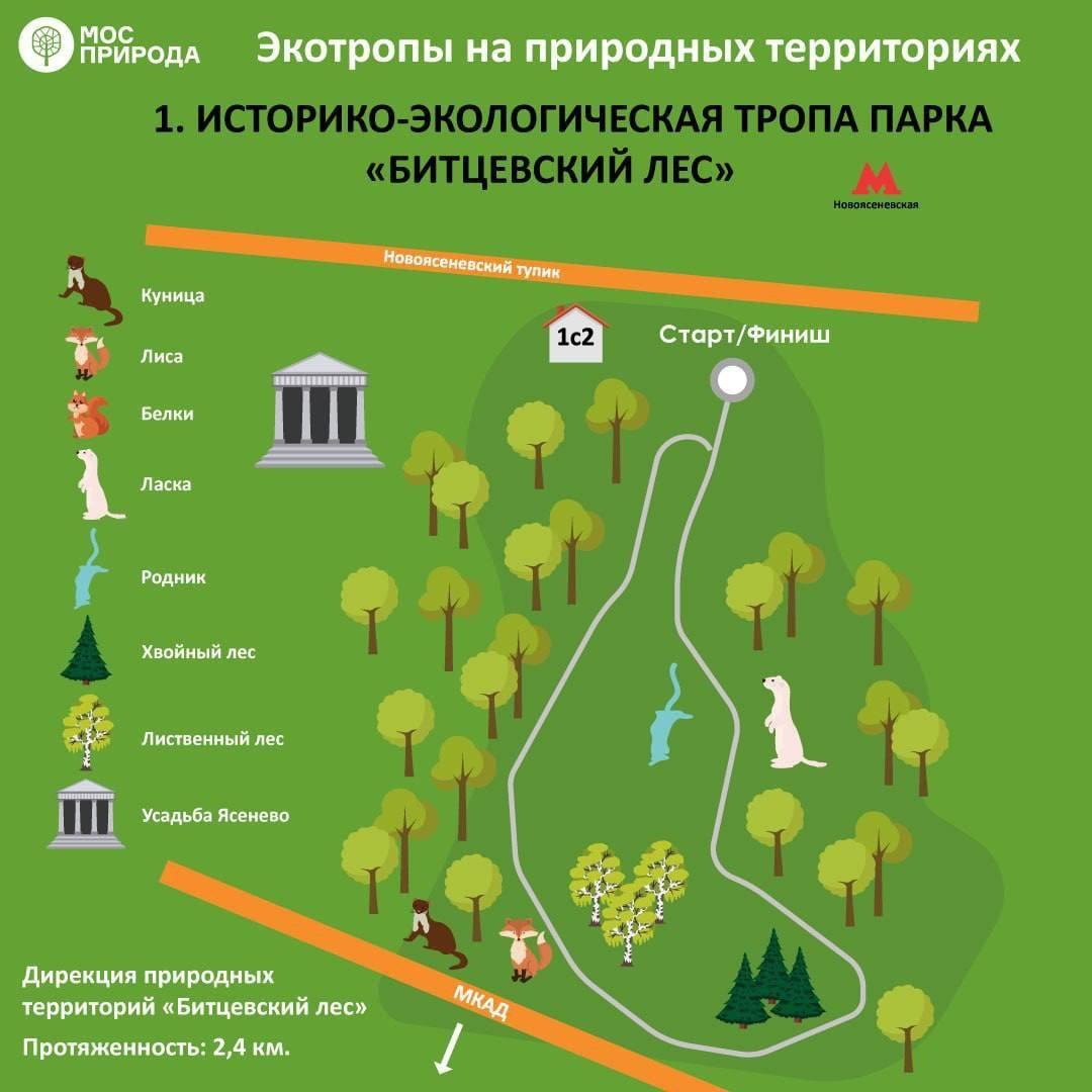 В Москве появилось семь экомаршрутов для осенних прогулок