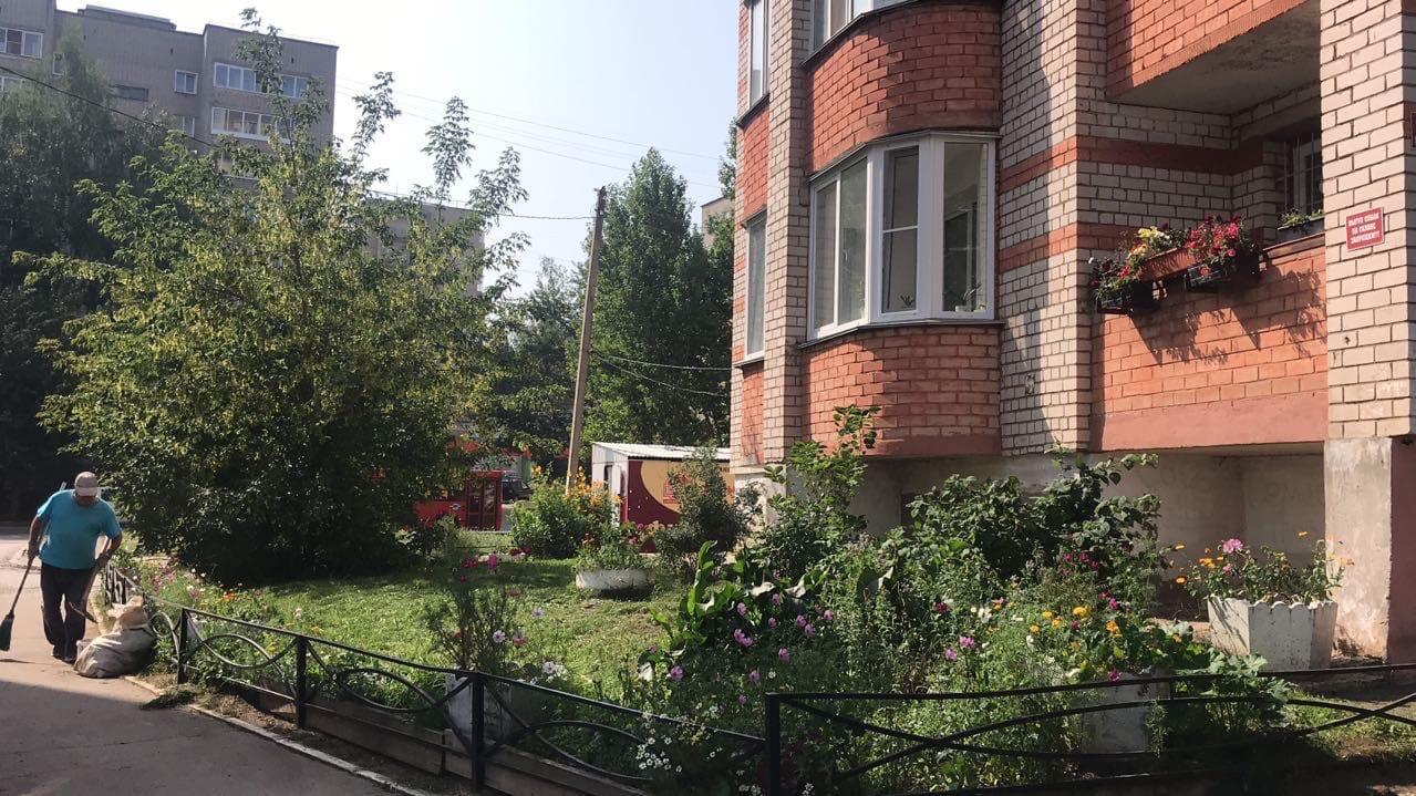 Улица Кольцова дом 15 скошена трава