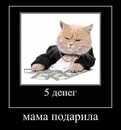 Александр Гвинский фотография #12