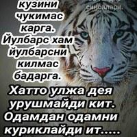 Иномиддин Исоков