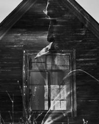 фото из альбома Fuze Krec №16