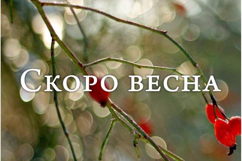 О погоде на первой неделе весны в Архангельской области