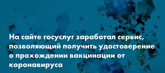 Заработал сервис, где россияне могут получить паспорт вакцинированного — Сноб