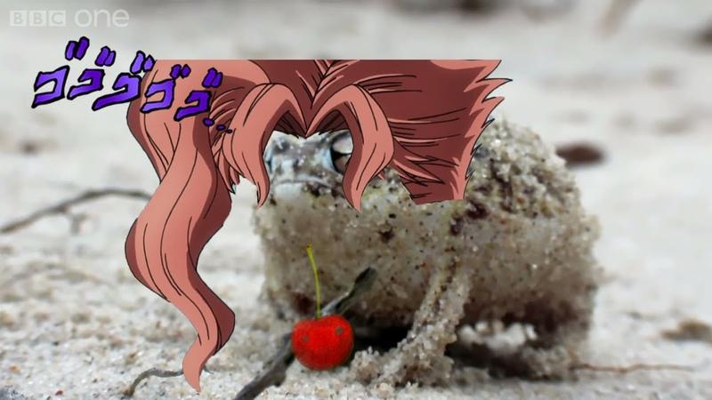 Angry squeaking kakyoin