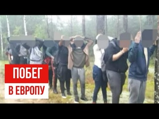 Нелегалы через Беларусь бегут в  Европу за €15 тысяч- Как действует схема переправки нелегалов