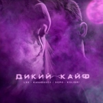 Kavabanga Depo Kolibri - Дикий кайф