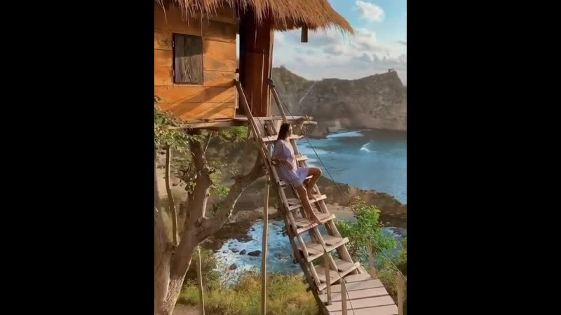🌴Пейзажи с видом на дом на деревьях с Бали
