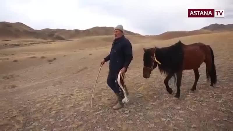 哈通社与阿斯塔纳电视台联合出品《神奇的哈萨克斯坦》系列纪录片