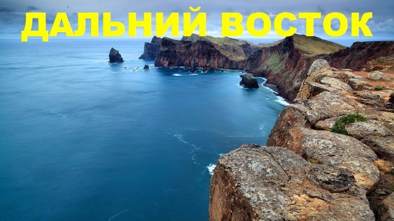 Восточное море России Дальний восток Дикая природа NAT GEO WILD животные BBC