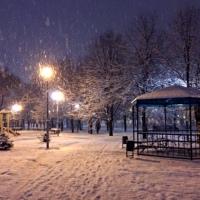 Фотография Елены Шубиной ВКонтакте