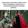Киса Мурыся