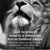 Алекс Иванов