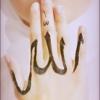 Ислам - Путь в рай