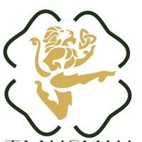 "Логотип Студия ирландского танца ""Талисман"" Красноярск"