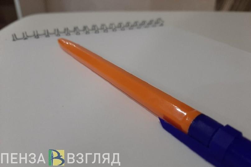 Жители Пензенской области смогут написать Тотальный диктант дома