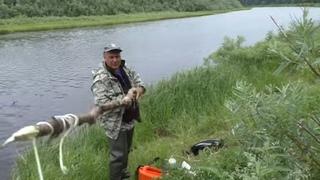 С этой СНАСТЬЮ ты всегда будешь С УЛОВОМ / Дедовский способ ловли рыбы / Как поймать много рыбы