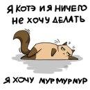 Фотоальбом человека Александра Илларионова