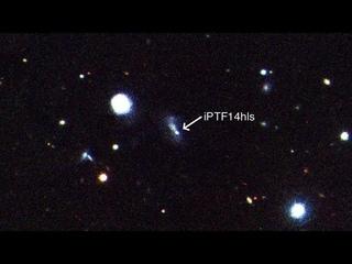 Загадки Вселенной: Сверхновая «зомби» iPTF14hls