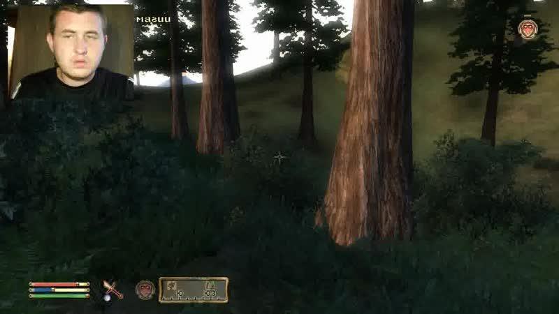 The Elder Scrolls IV Oblivion 38 Пещера Змеиная Нора