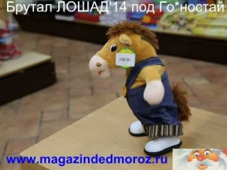 Смешной Конь, танцующий под Го*ностай